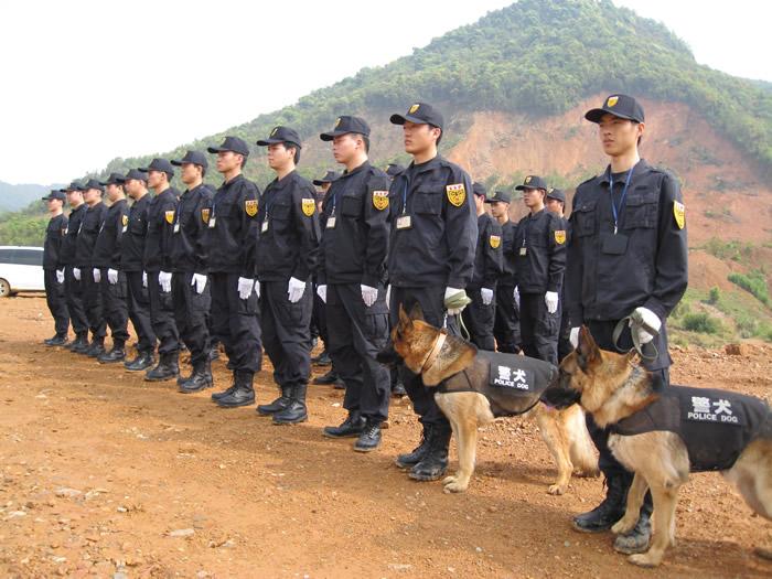 杏彩注册登录官方犬防服务